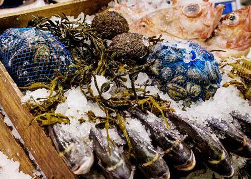 Övriga skaldjur